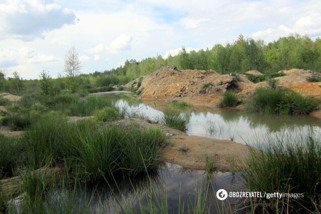 Наслідки незаконного видобутку бурштину для екології
