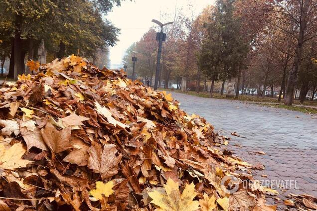 Красива осінь в Дніпрі