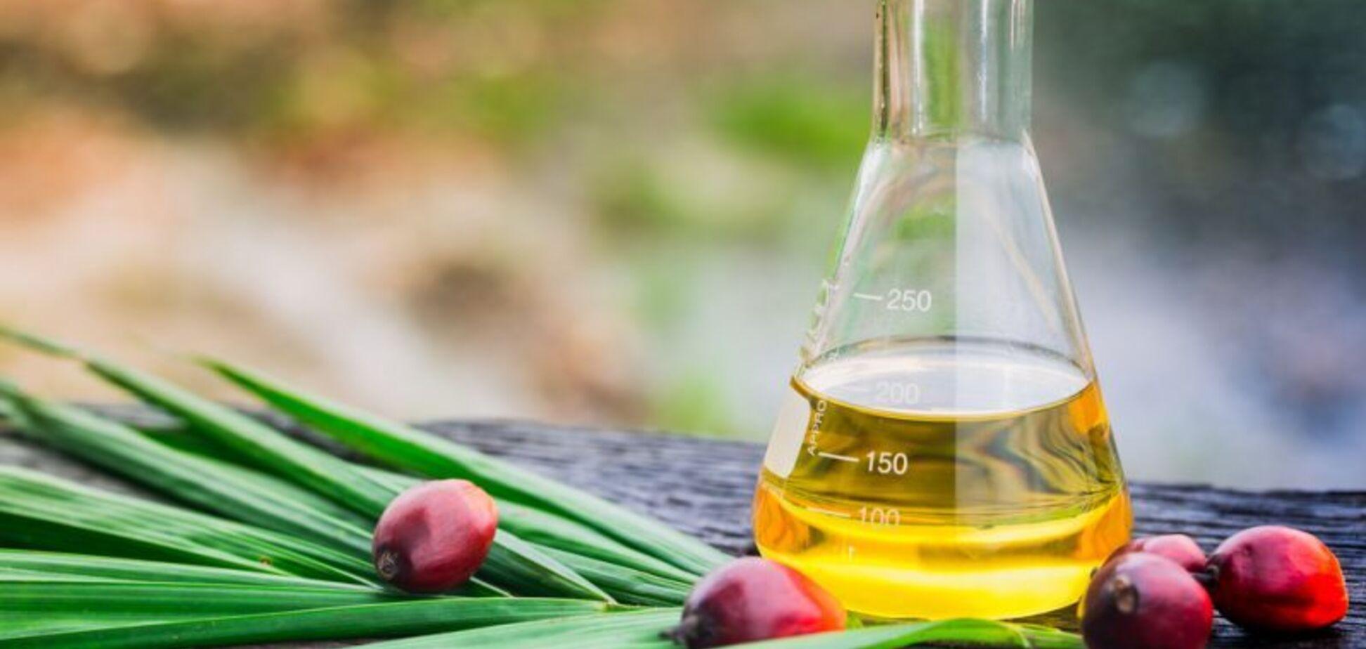 Пальмовое масло: распространенные мифы и факты