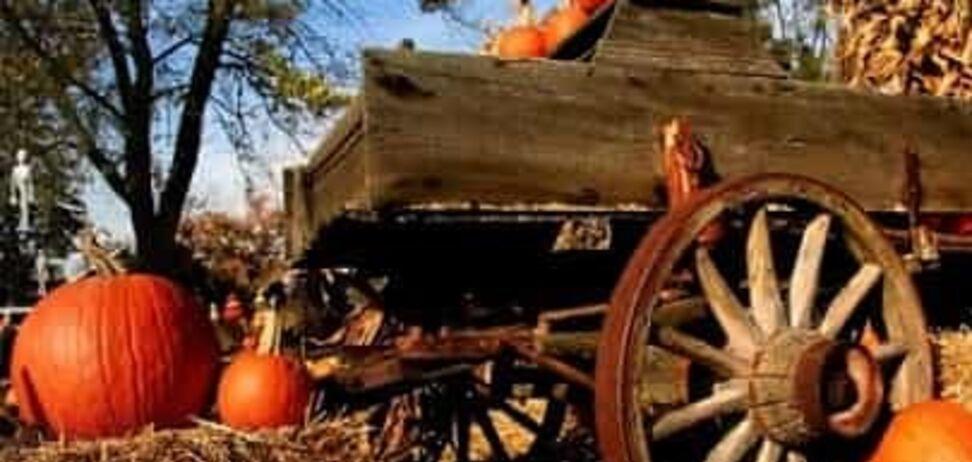 Прикмети й свята 30 жовтня: що не можна робити