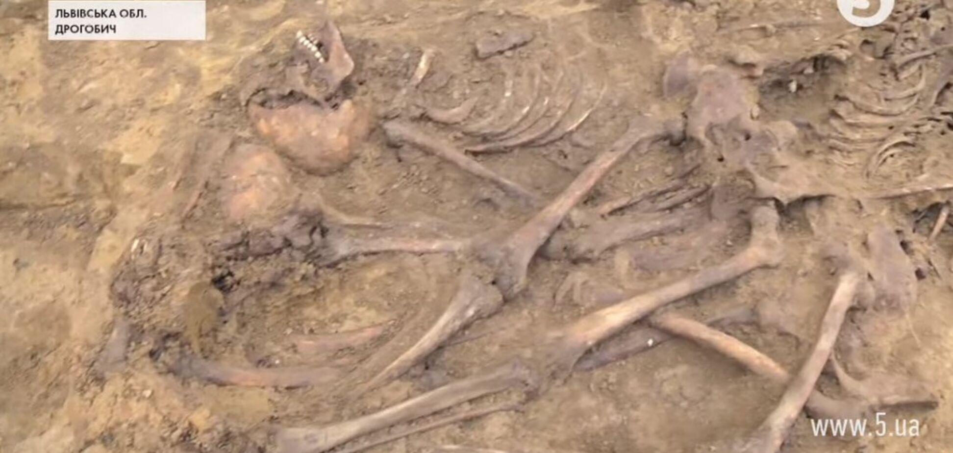 Стреляли в затылок и добивали кастетом: на Львовщине нашли останки 61 человека. Видео 18+