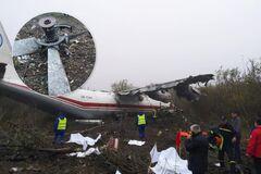 'Повідривало голови': з'явилися моторошні подробиці падіння літака під Львовом
