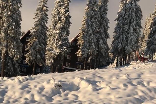 Сніг на курорті Драгобрат