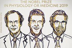 Нобелевская премия по медицине 2019: дыхание на уровне клеток и генов
