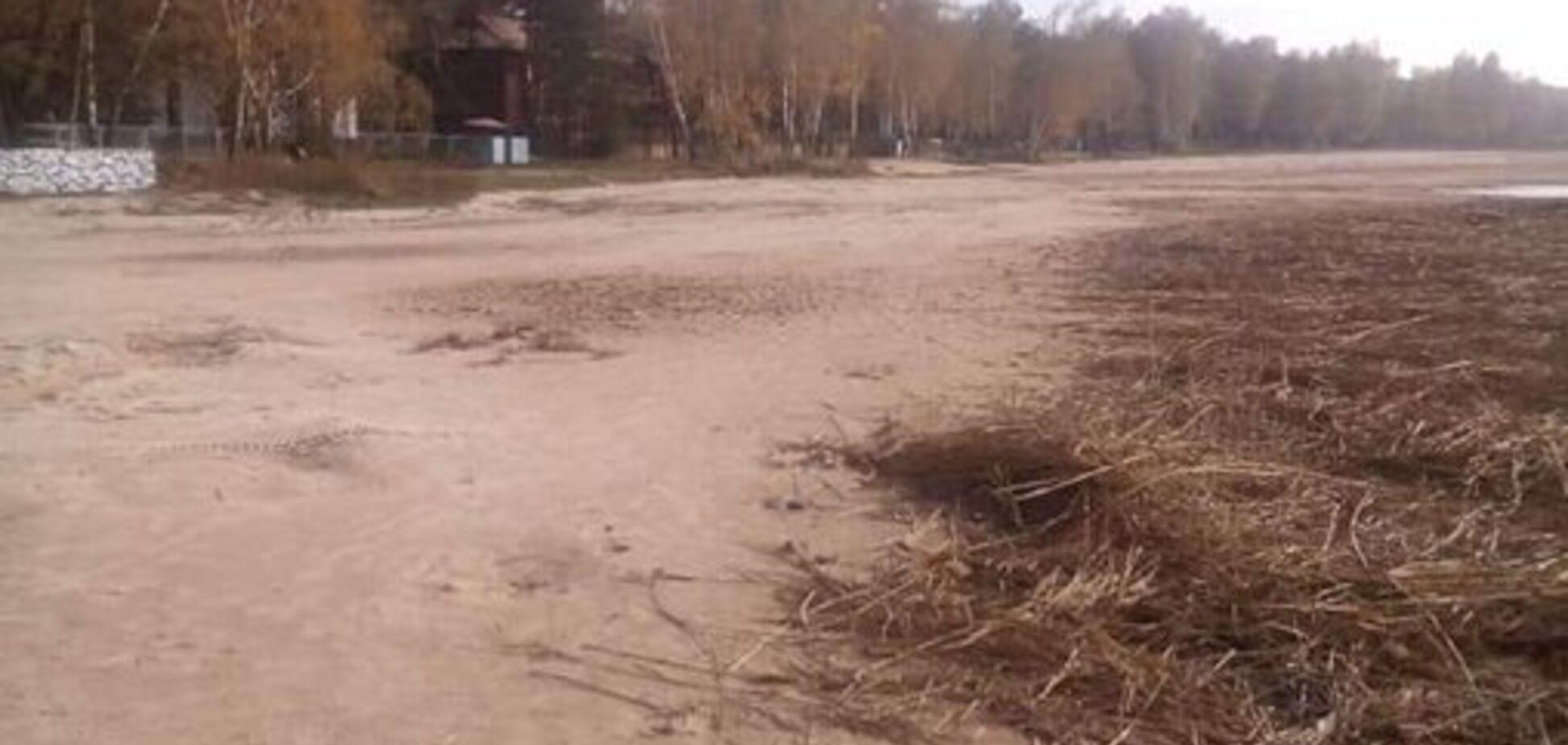 З популярним курортом України трапилася катастрофа: жахливі фото