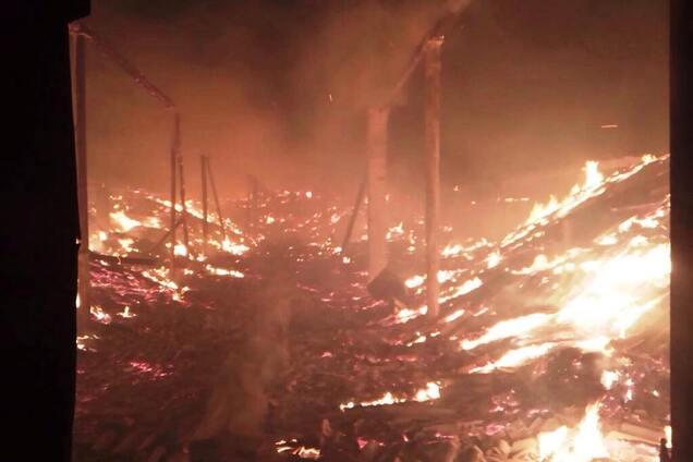 На складе с семенами подсолнуха произошел масштабный пожар