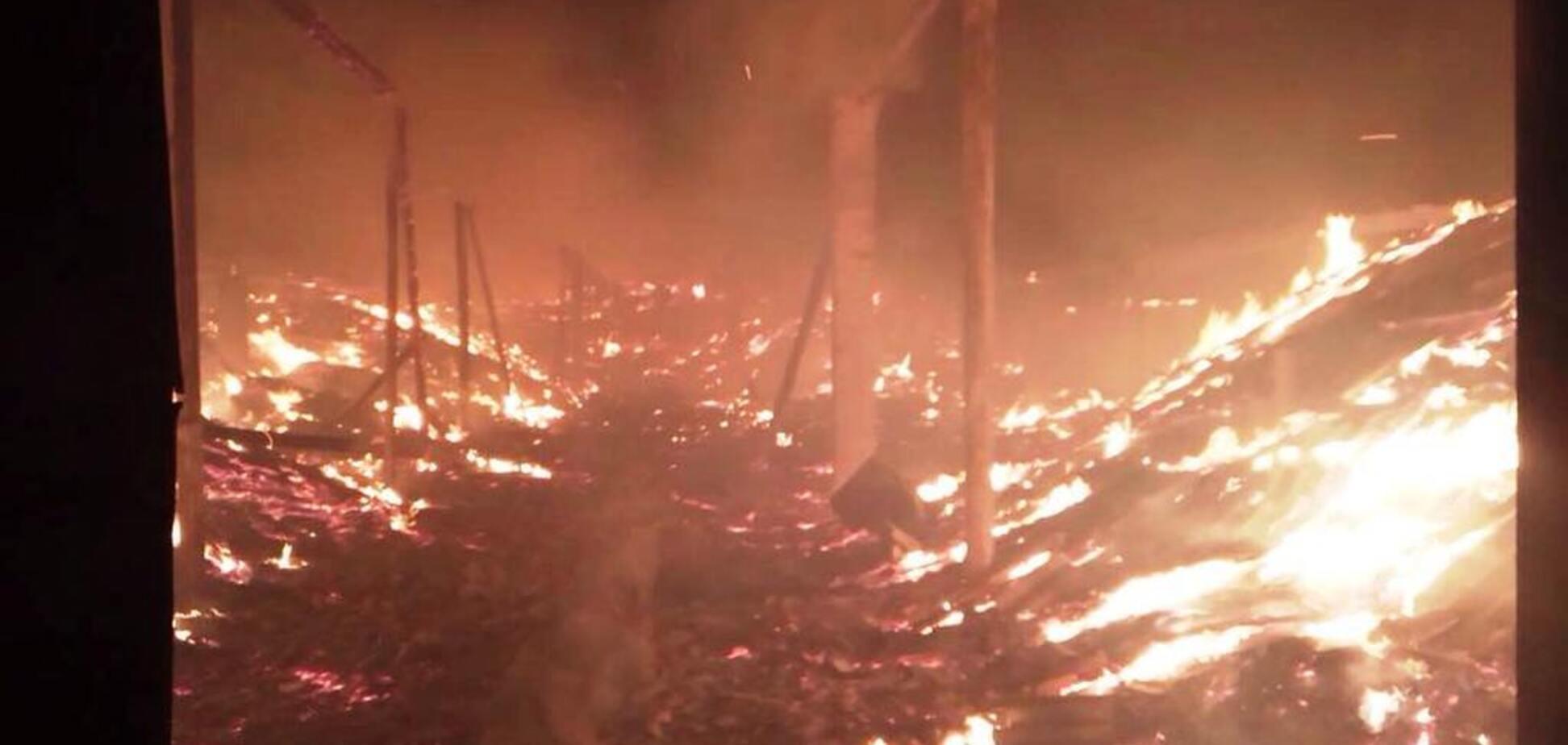 На складе под Кривым Рогом произошел масштабный пожар