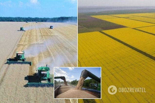 Каким был 2019 год для украинских аграриев