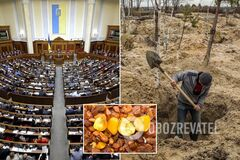Легализация добычи янтаря: 'Слуга народа' приняла важный законопроект
