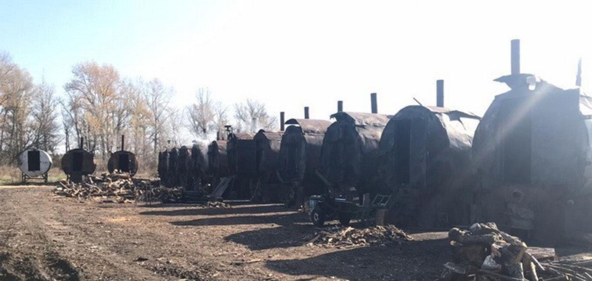 Рубили лес в огромных масштабах: СБУ накрыла группу злоумышленников под Харьковом