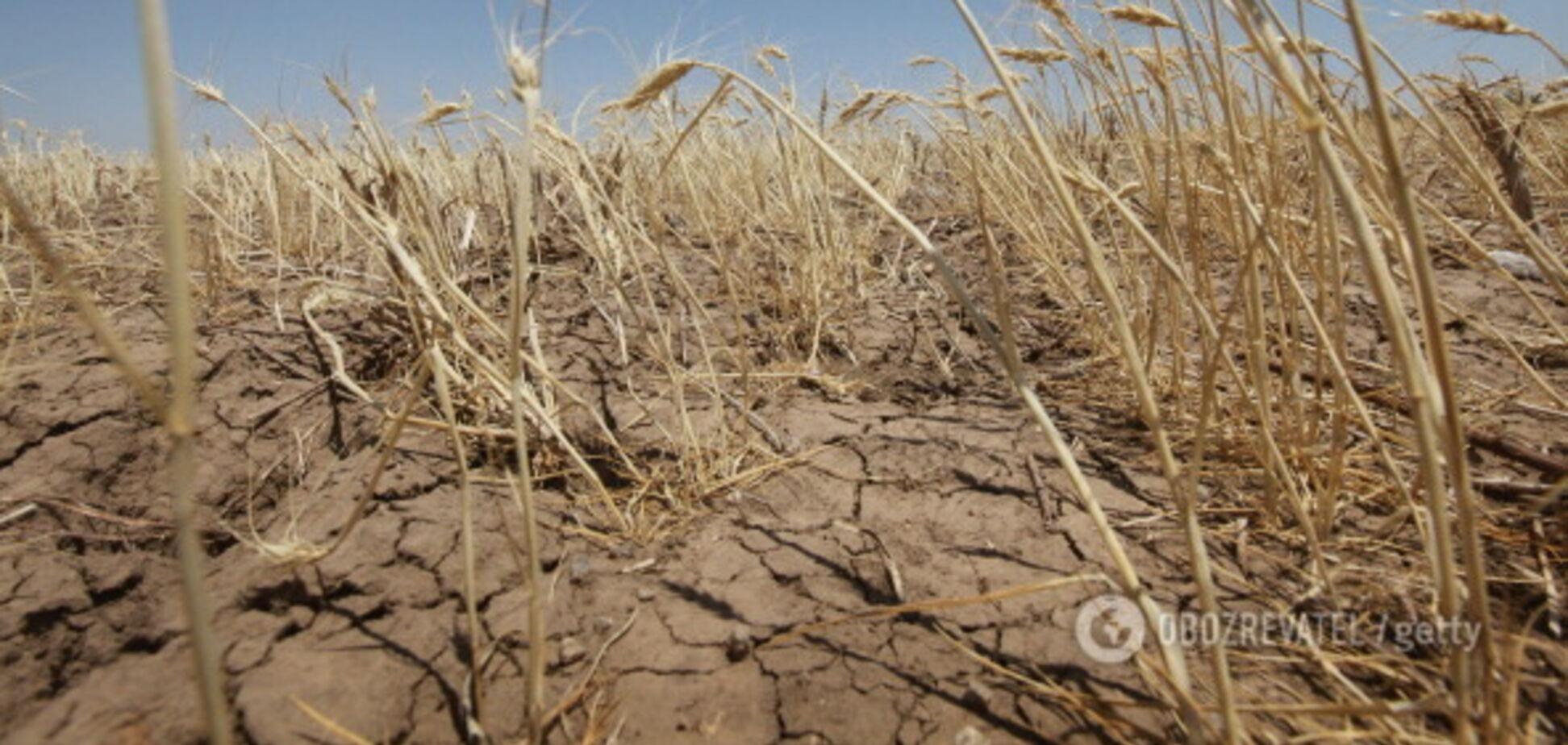Тысячи людей в опасности: стало известно, чем грозит засуха в Крыму
