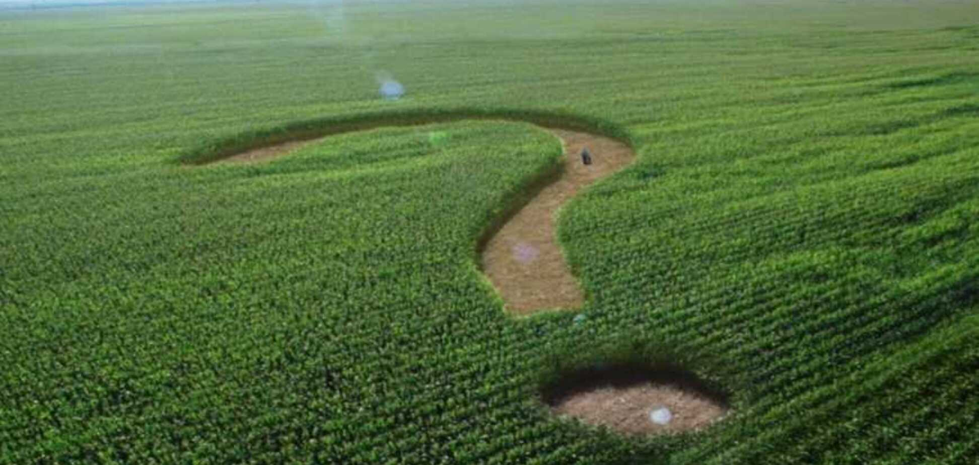 Земля - селянам? Чим небезпечна ЗЕмельна реформа