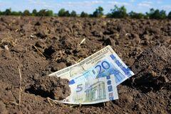 Жебрівський назвав альтернативу земельній реформі