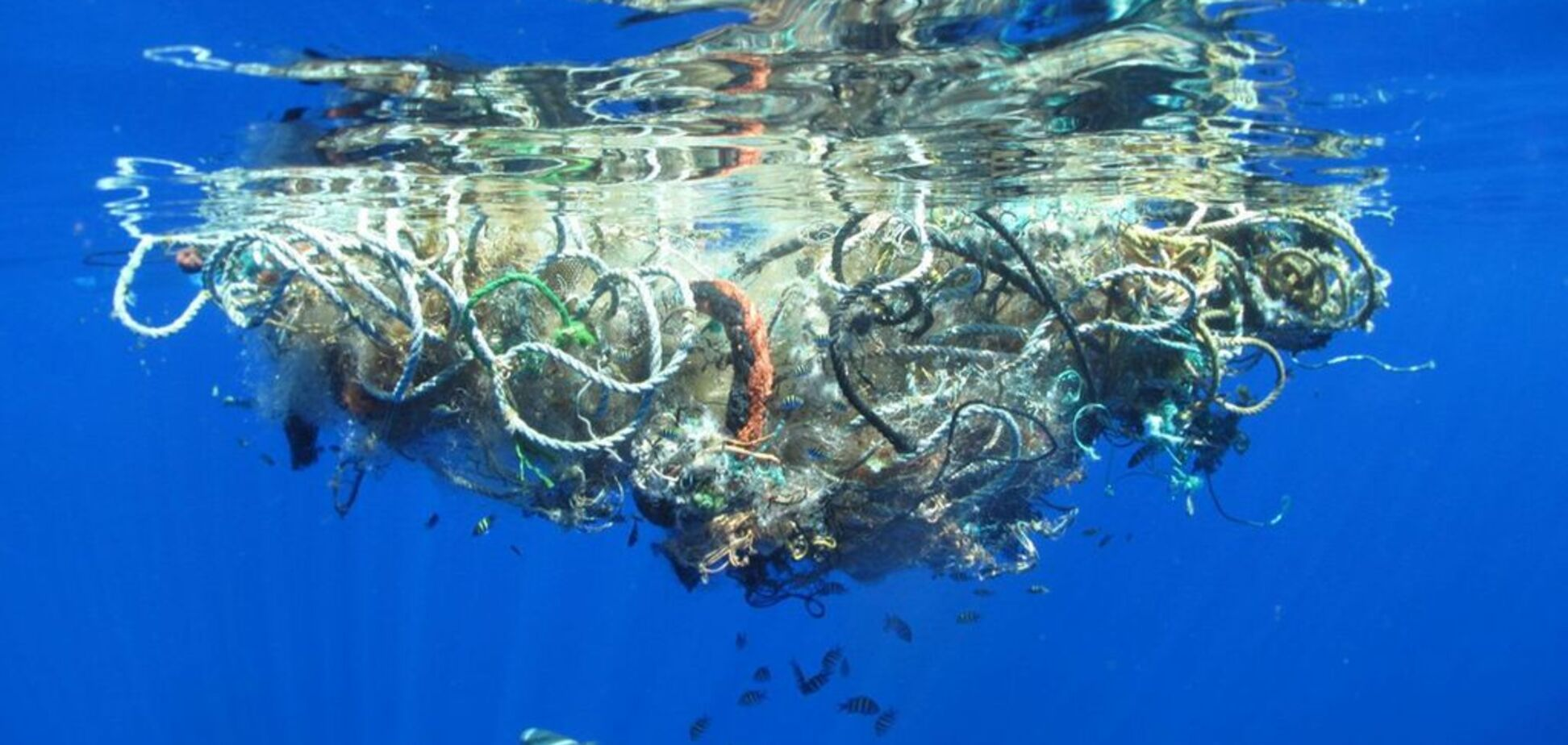 Подорож гігантських островів сміття в океані: NASA показало страхітливу картину – відео
