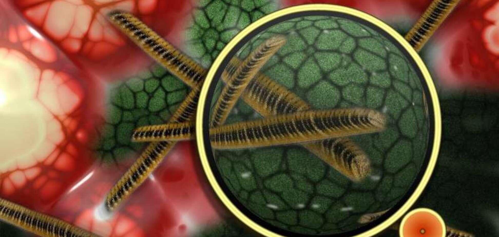 В організмі людини знайдено новий невідомий вірус