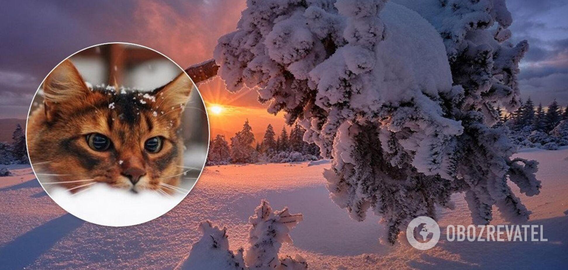 Відразу почнеться зима: синоптик розповів про погодні аномалії в Україні