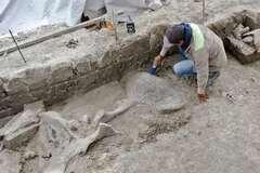 Найдено первое в мире кладбище животных-гигантов. Фото