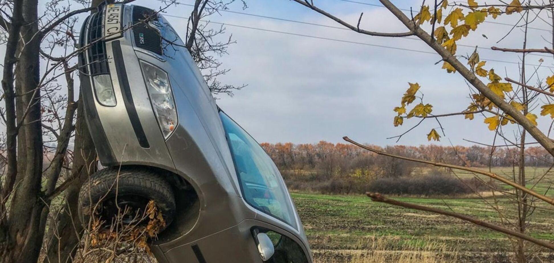 Повис на дереве: под Днепром произошло ДТП с переворотом