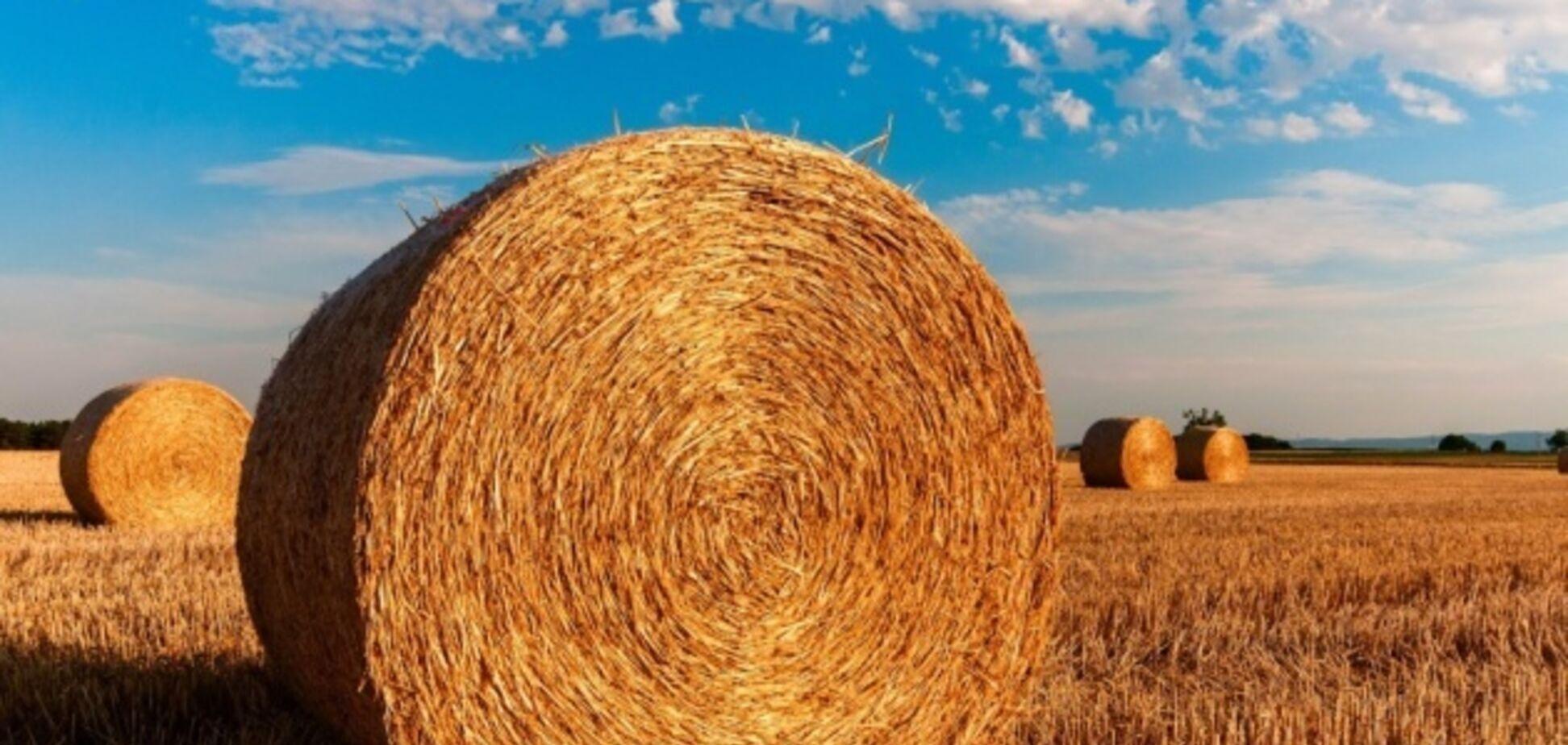 """Реформа проти земельна дискримінації: потрібен закон про """"Ефективну землю"""""""