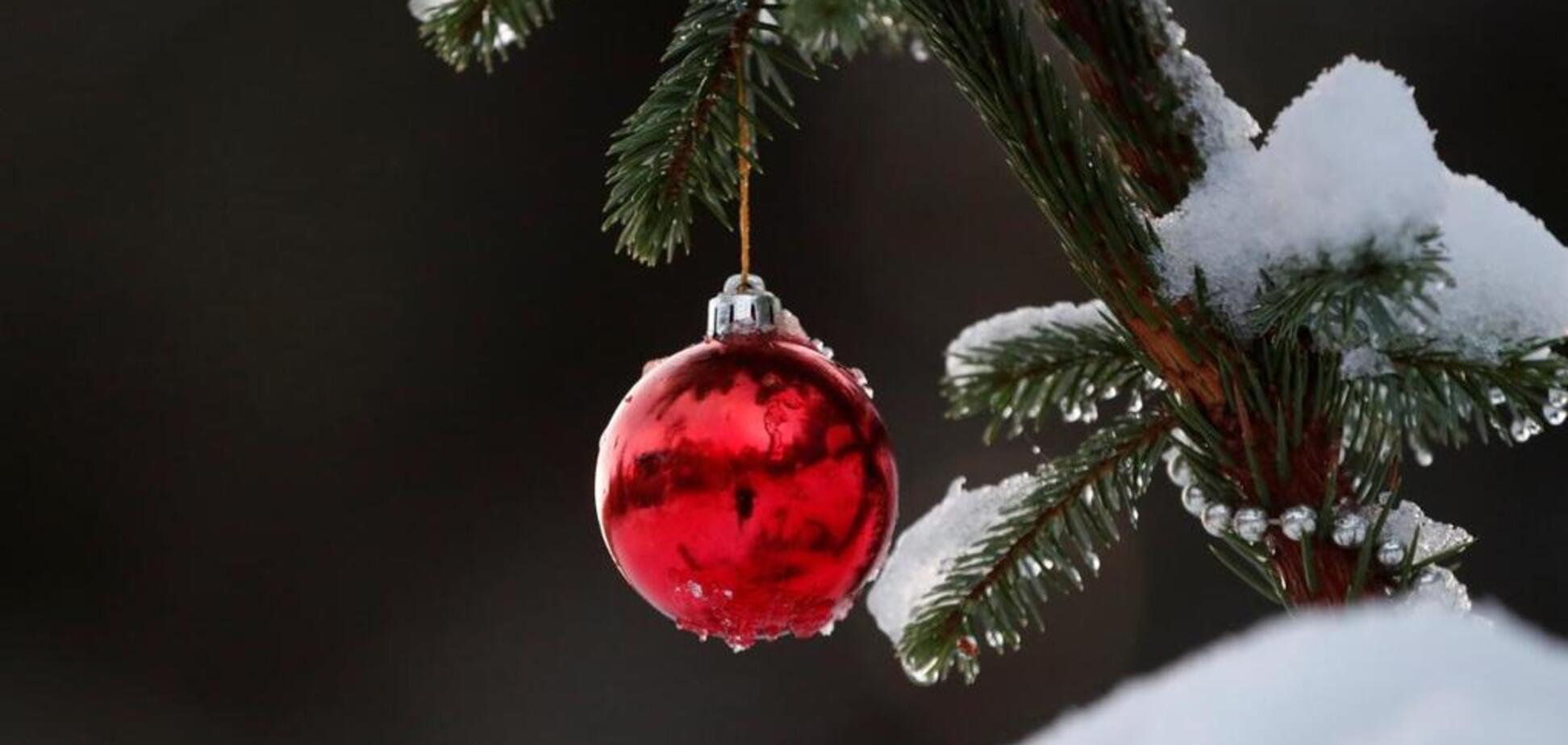 Как встретить Новый год и не навредить экологии: топ-3 полезных советов