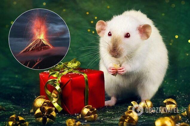 Год Белой Металлической Крысы несет трансформации
