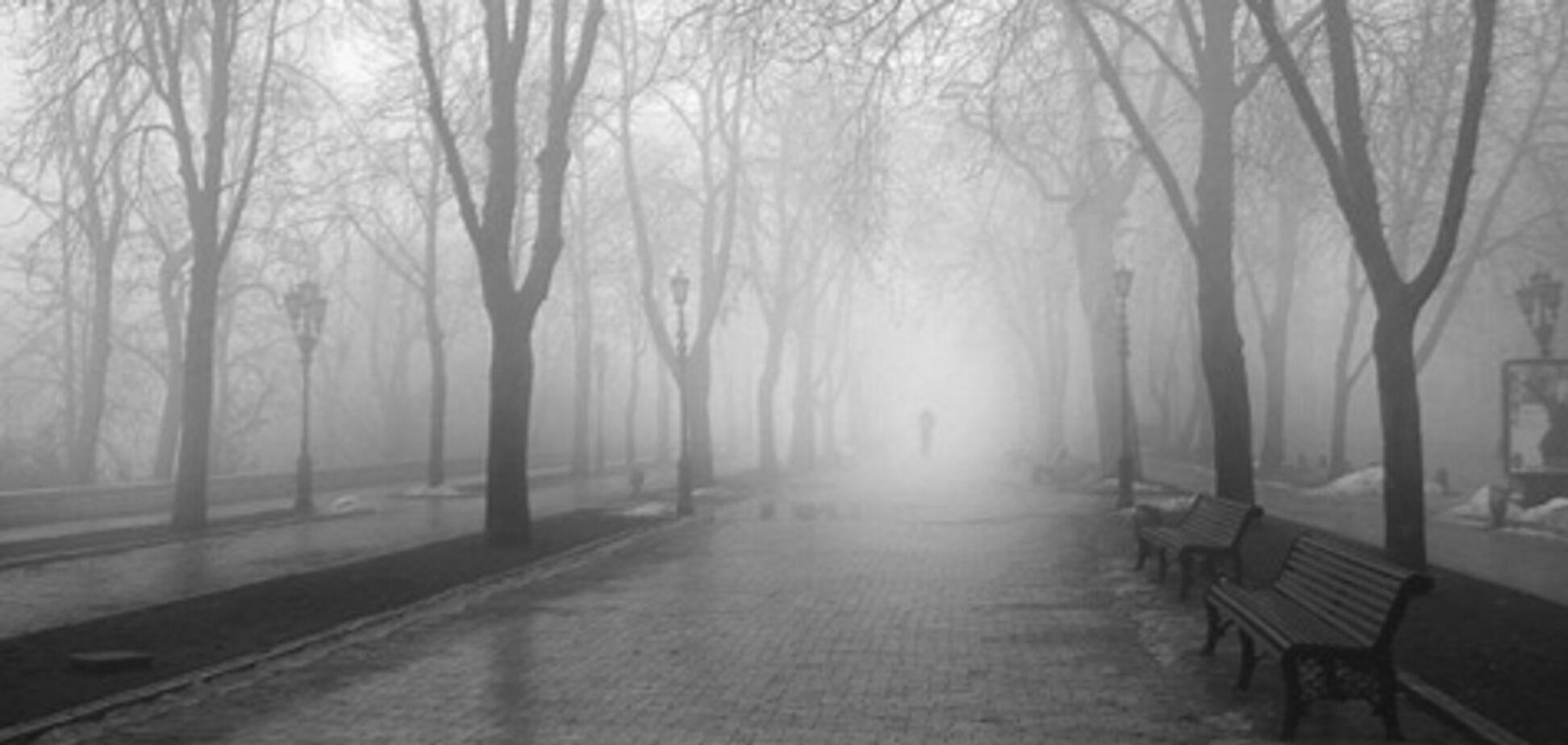 Зима не торопится: прогноз погоды в Одессе и области на 14 декабря