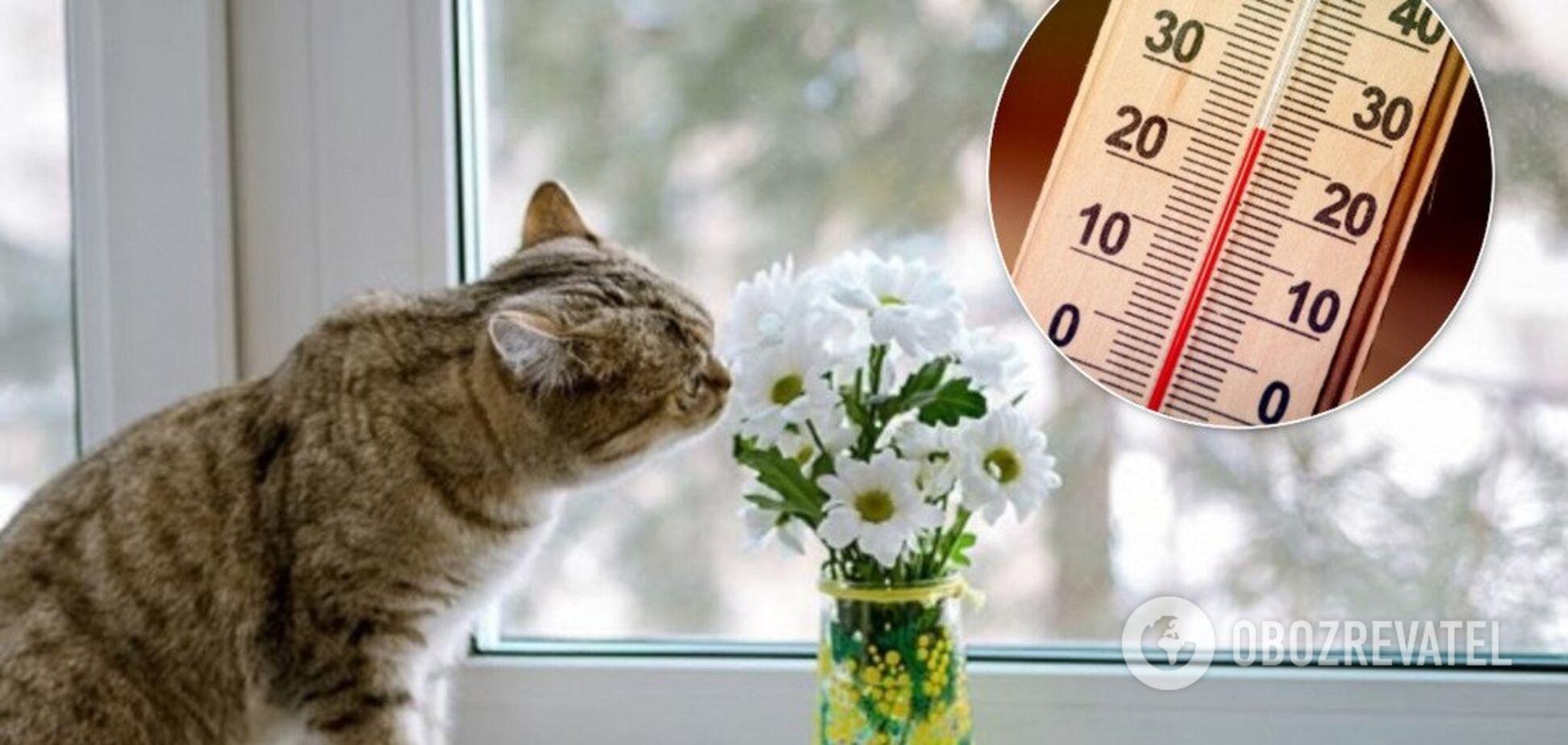У середу, 18 грудня, в Україні очікується до 15 градусів тепла
