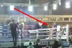 Чемпион мира по боксу порвал ринг и лишился титульного боя - опубликовано видео