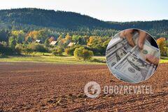 Ринок землі: названо можливі величезні втрати бюджету України через закон