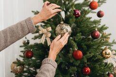 Новый год 2020: где и когда в Днепре будут продавать елки