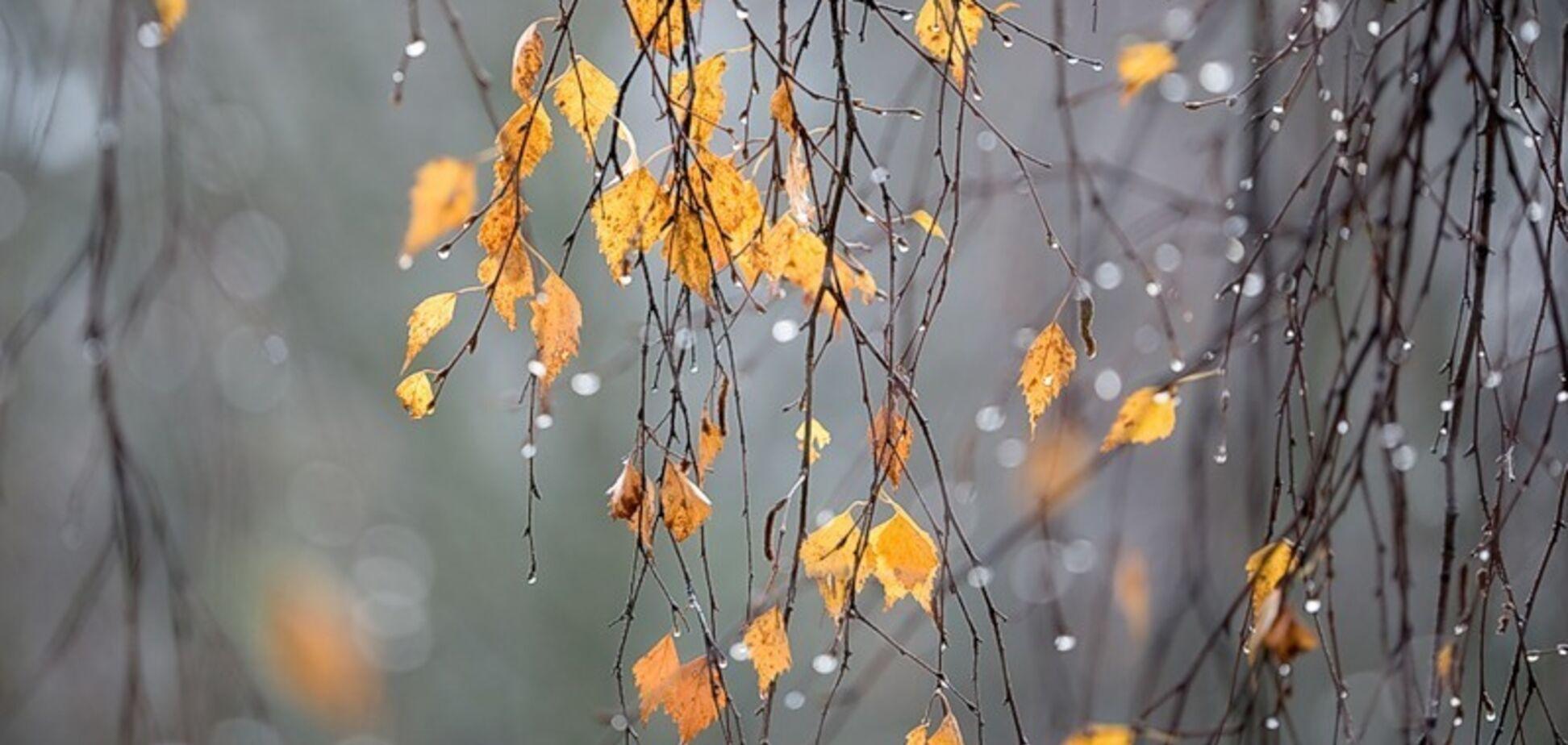 Зима здалася: синоптикиня уточнила прогноз погоди в Україні