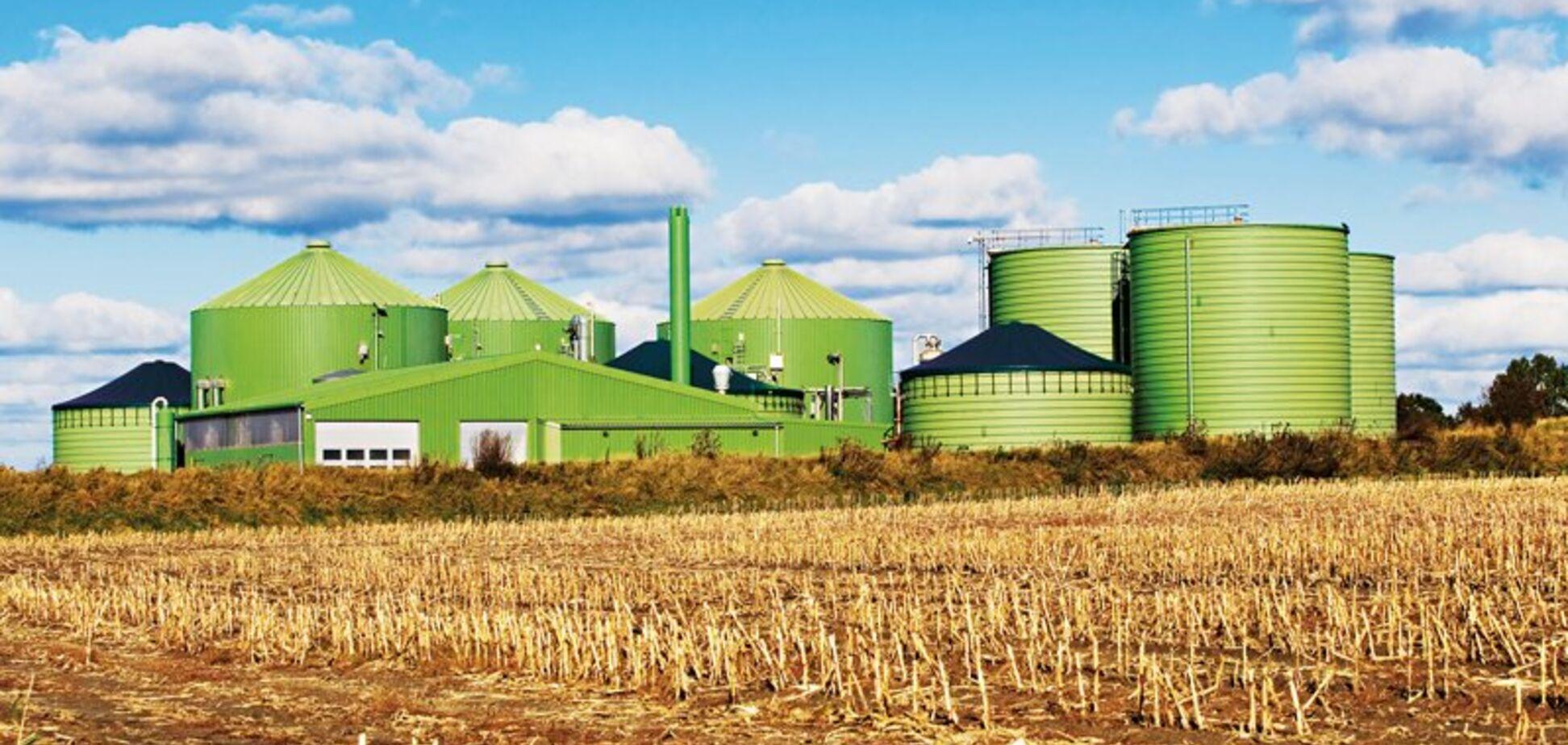 Ринку біопалива передбачили небувале зростання: озвучено перспективи для України