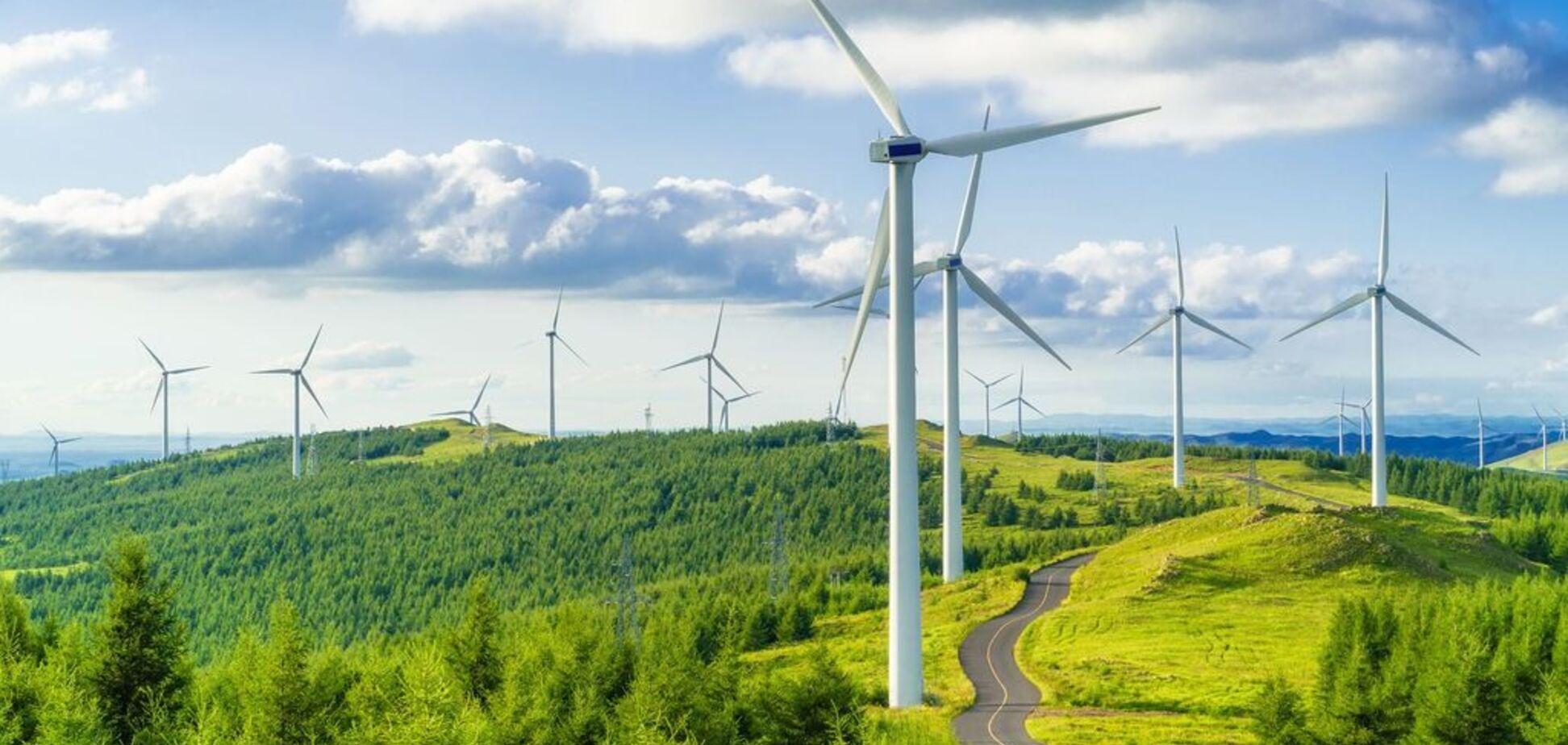 'Зеленой' энергетике предсказали стремительный рост: что изменится