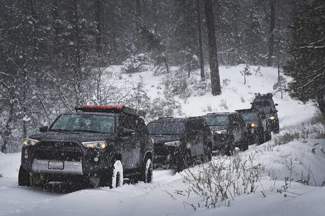 В Лос-Анджелесе впервые за полвека выпал снег: фото и видео необычного явления