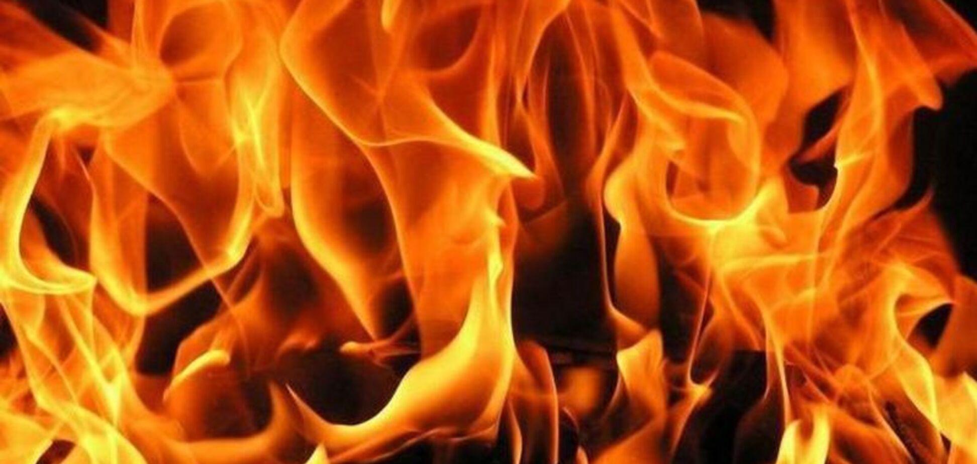 В Запорожской области пожилой мужчина сгорел в собственном доме