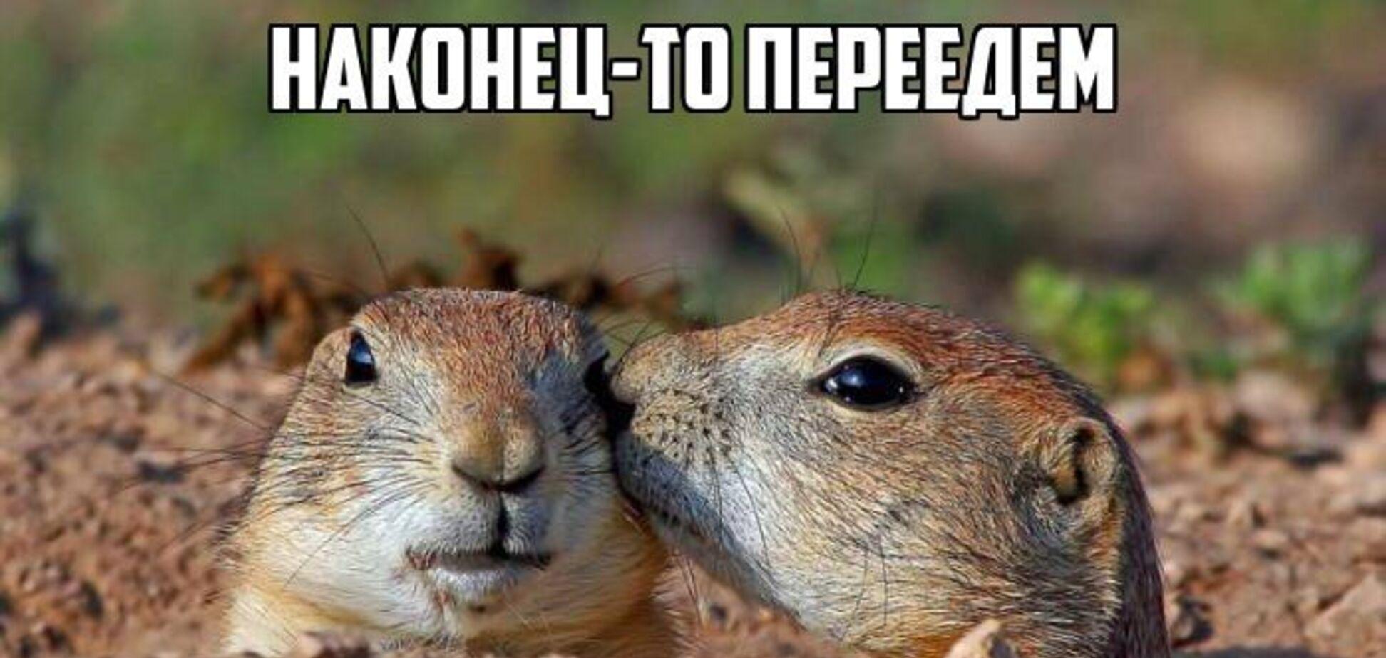 Лежал более 600 лет! В России суслик нашел старинный драгоценный клад
