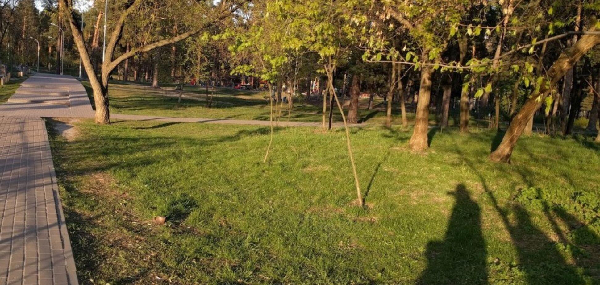 У Києві посеред парку знайшли труп немовляти в пакеті: фото