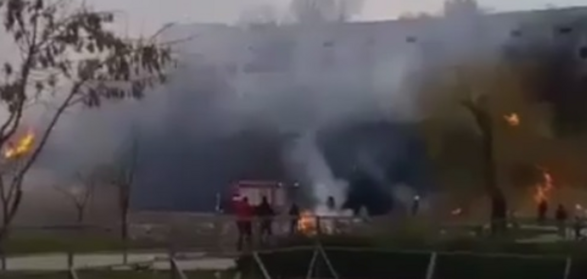 В Запорожье произошел пожар в парке Победы