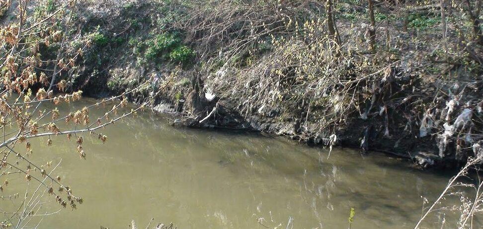 Много хлама, грязная вода: гидролог рассказал о состоянии рек в Украине
