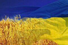 Украина меняется. И это стремительно происходит на наших глазах