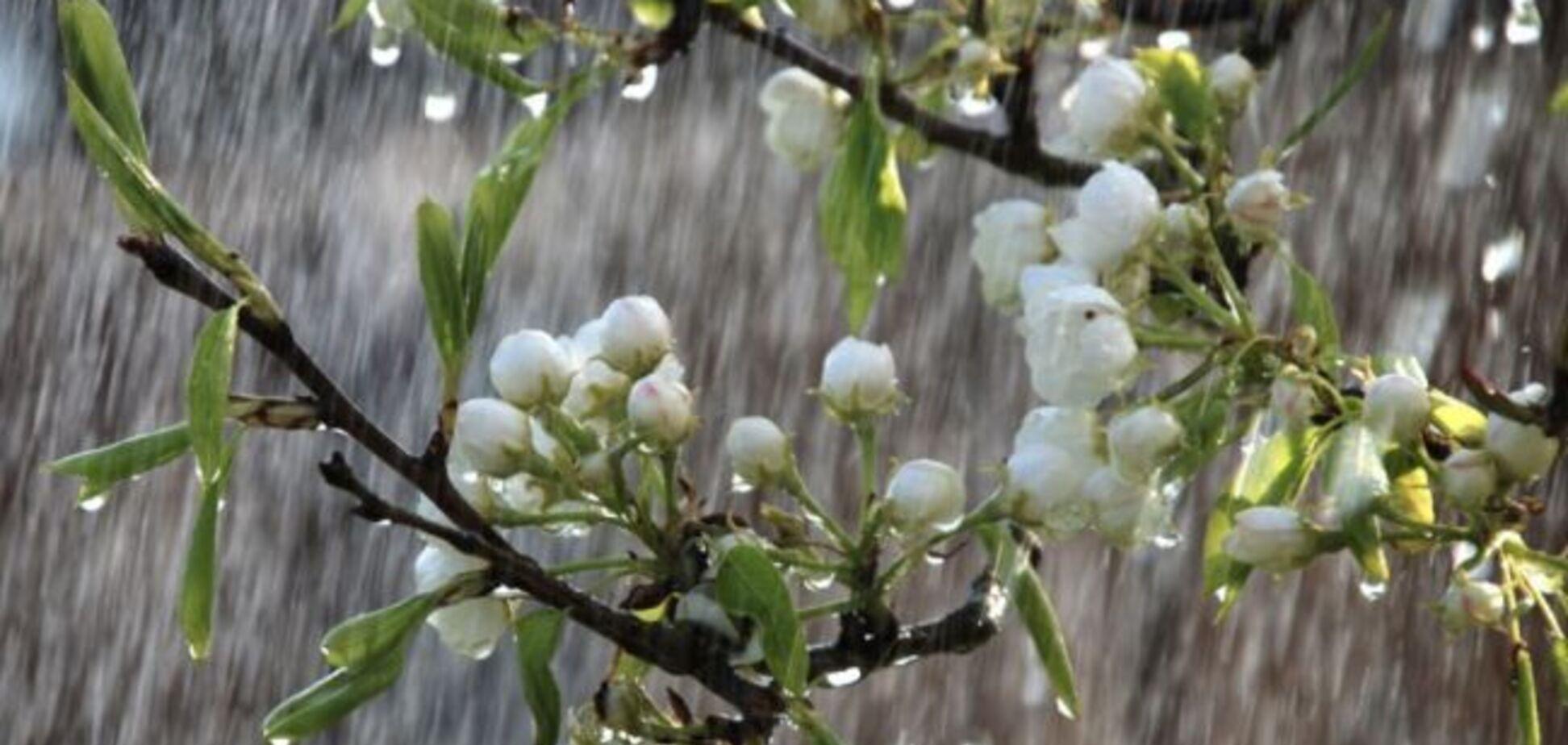 Заллє дощами з грозами: в Україні на Великдень різко погіршиться погода