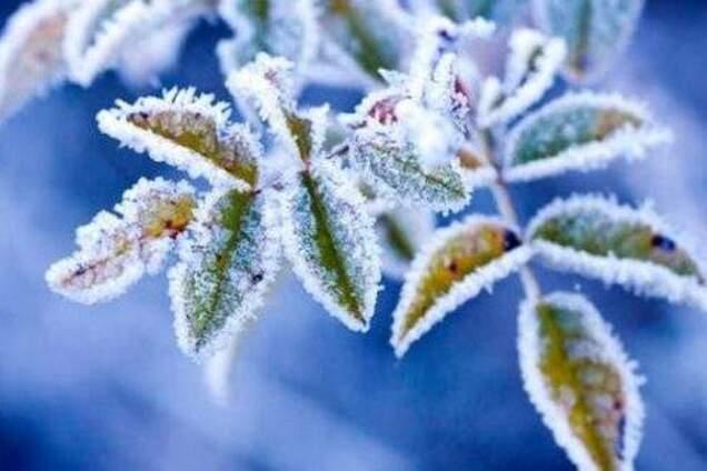 Заморозить і заллє: синоптики уточнили холодний прогноз по Україні