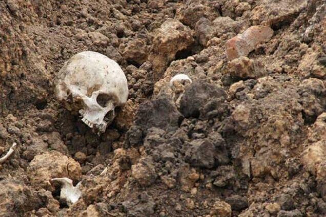 В Харькове нашли человеческий череп: что известно
