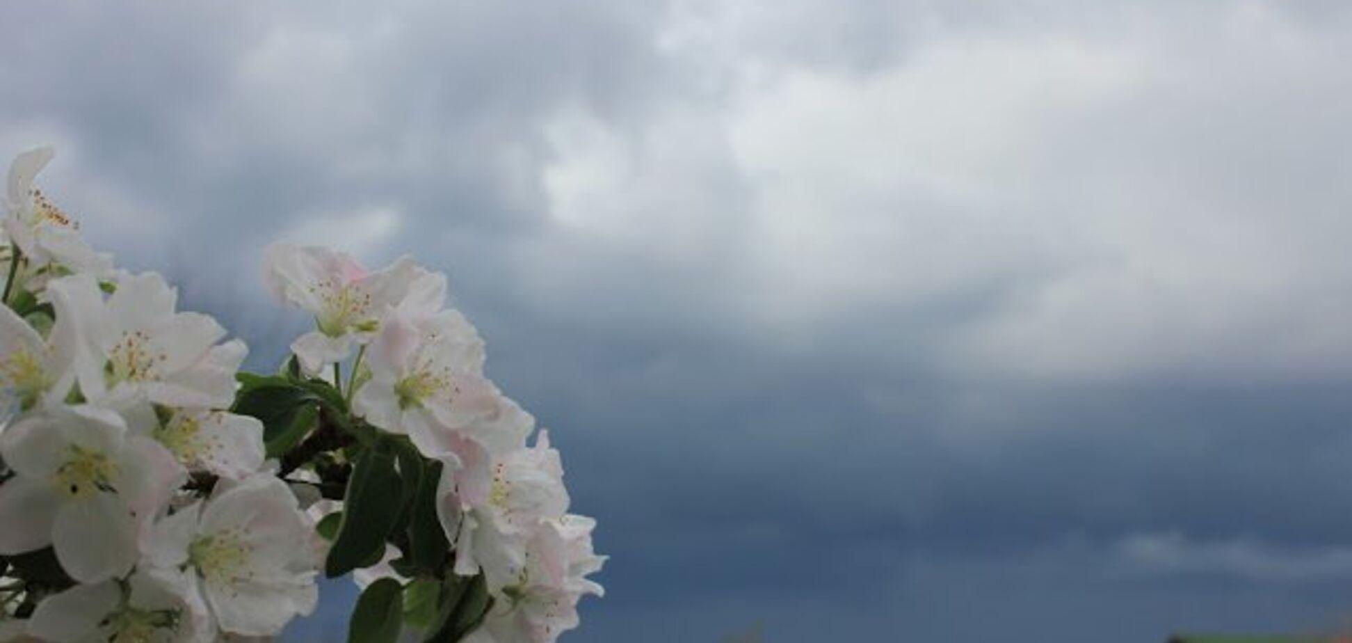 +28 і грози: синоптики дали неоднозначний прогноз погоди по Україні