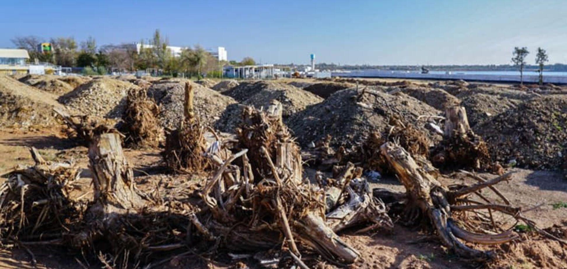 Крым настигло новое экологическое бедствие