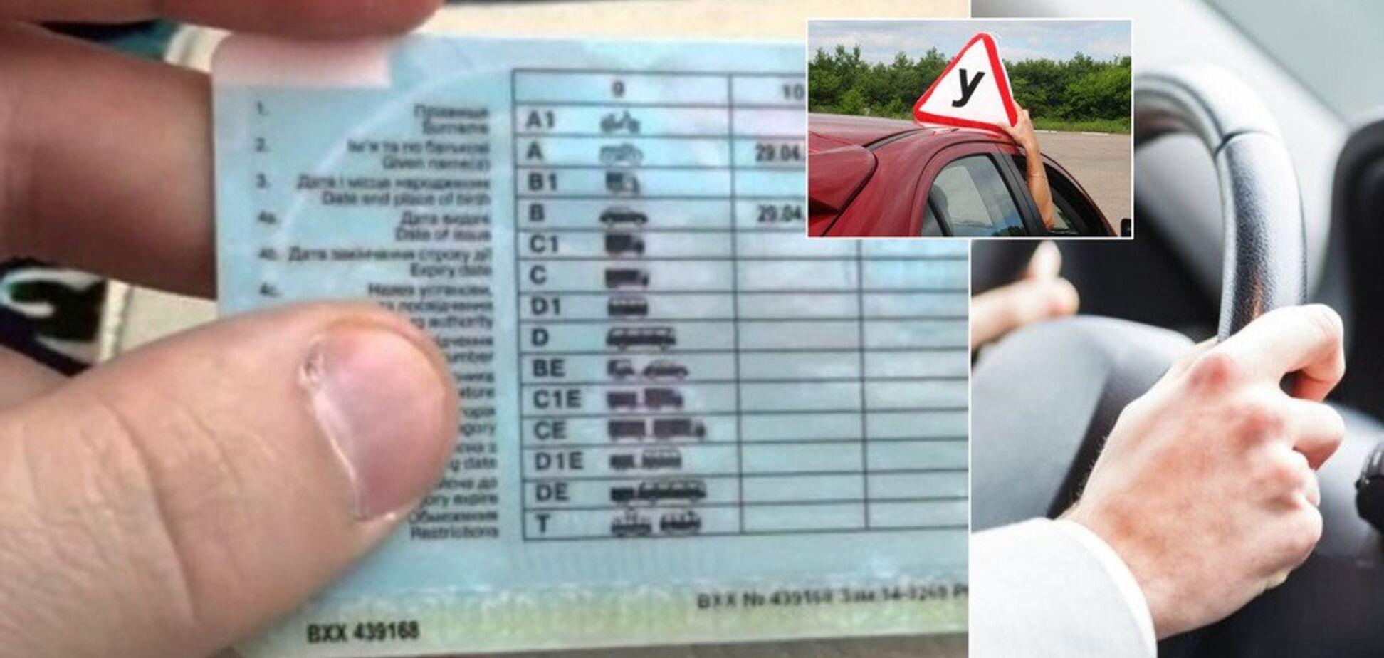 Выплаты на 40% больше и группа крови в правах: украинских водителей ждут серьезные изменения