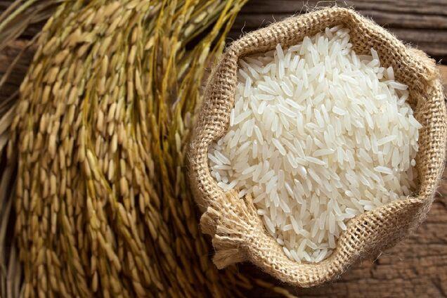 Помогает похудеть: развенчан популярный миф о пользе риса