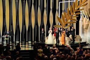 Каннский кинофестиваль-2019: названы победители