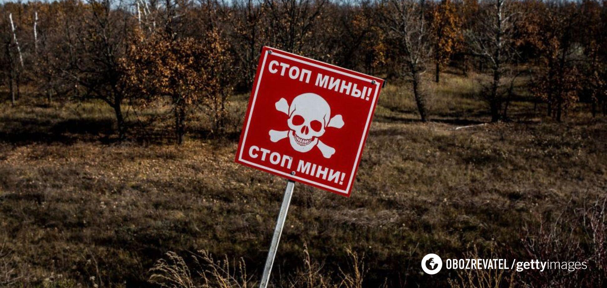 Новости 'ЛНР' как прививка для Украины