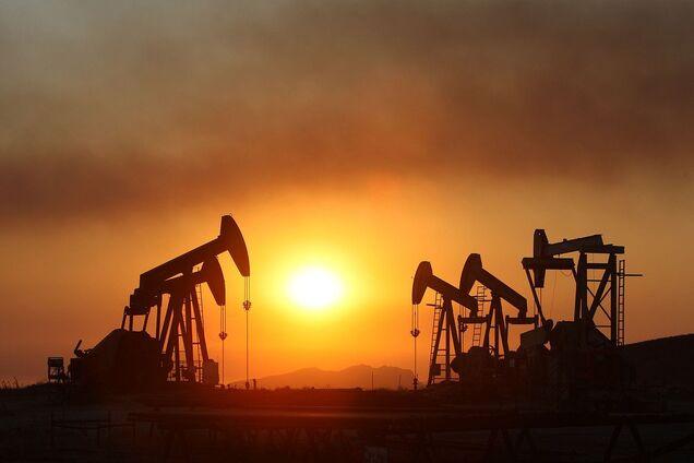 Ціни на нафту виросли